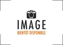 Bandol 21x21 - bordeaux